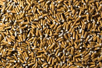 Filter Zigaretten Sucht