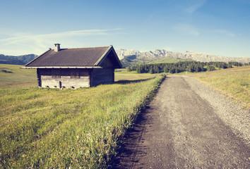 Retro style photo of green summer farmland