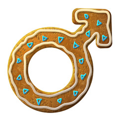 Gingerbread male symbol decorated colored icing