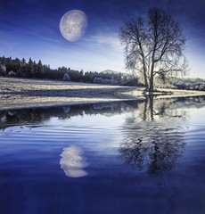 winter morning and moon