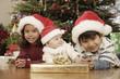 Hispanic siblings wearing Santa Claus hats