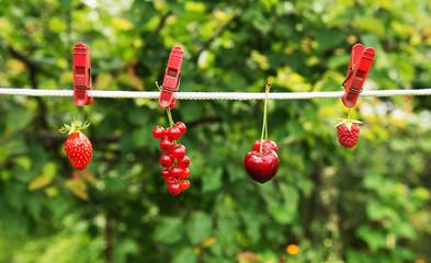 Загар для ягод