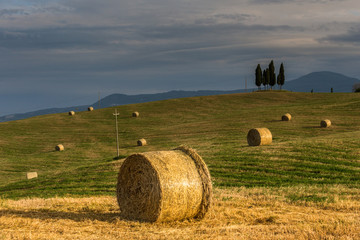 Tuscan landscape with hay bales