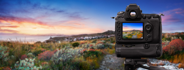 Dslr camera shooting at sunset on mediterranean vegetation