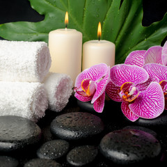 Beautiful spa still life of zen stones with drops, blooming twig