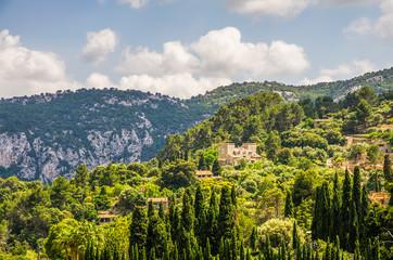Countryside landscape of Majorca