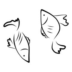 vector hand drawing icon fish