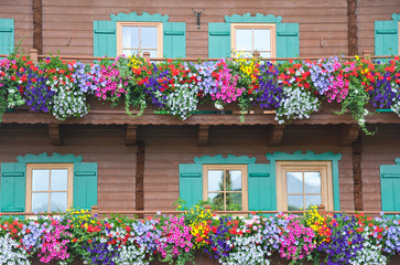 wooden balcony decorated with different colorful flowers
