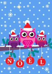 Noel Owls