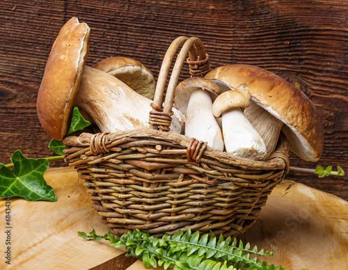 canvas print picture mushrooms - Boletus edulis