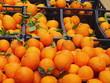 canvas print picture - oranges market