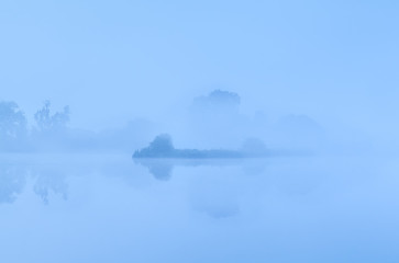 bush by lake in dense fog