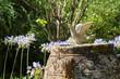 Friedhof oder Garten mit einer Taube als Dekoration