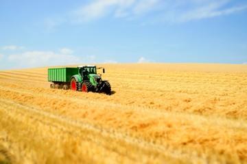 Getreideernte, Abtransport mit Schlepper und Anhänger