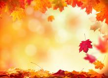 """Постер, картина, фотообои """"Autumn background with wooden planks"""""""