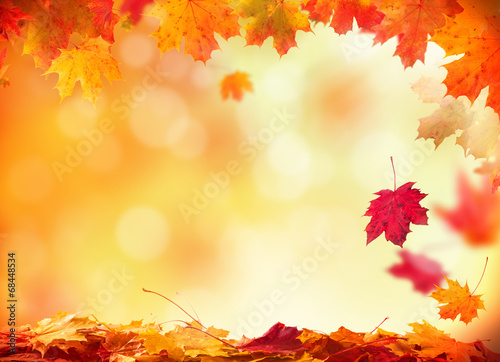 Leinwanddruck Bild Autumn background with wooden planks