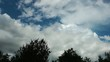 Clouds and Trees Time Lapse