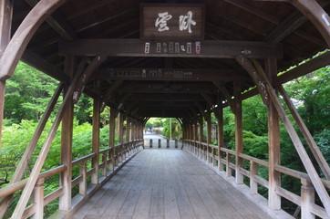 夏の臥雲橋