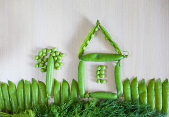 Playing with vegetables, picture of pod of peas and fennel.