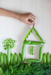 Playing with vegetables, child's kid's hand making picture of po