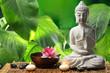Buddha in meditation - 68464506