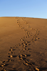 Human footsteps in the sand dunes of Erg Chebbi in the Sahara De