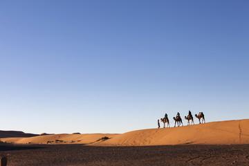 Desert, Camel Ride, Enjoying and Happy People