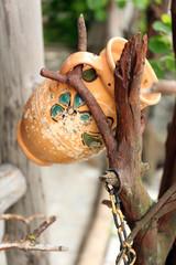 Old retro amphora in garden