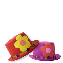 Two clown hats isolated