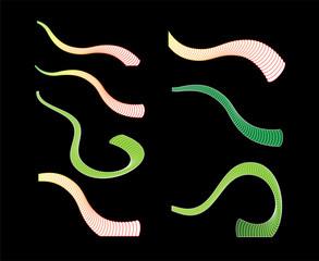Elephant Hose Vector Spiral Element
