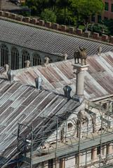 Duomo di Pisa statua Grifo, decorazioni, bassorilievi e sculture