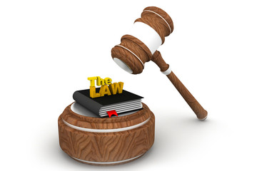 Wooden gavel and law book.
