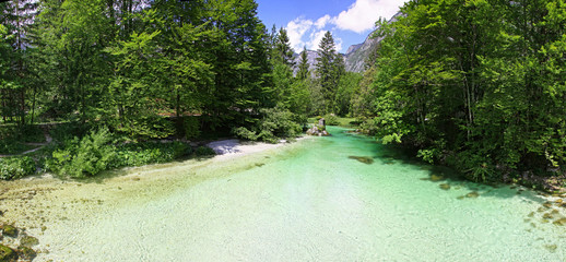 Sava Bohinjka river in Julian Alps, Slovenia