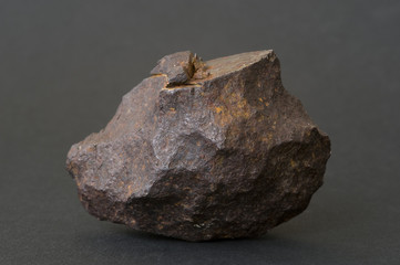 Metallic iron meteorite. 6cm across.