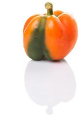 Orange capsicum on white background