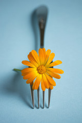Fork with Blossom