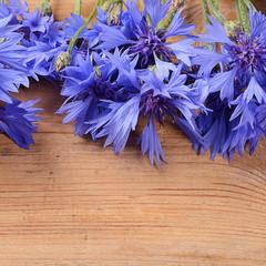 The beautiful cornflower on wooden background