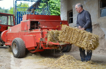 Organic farmer making/stack bales for feeding livestock.