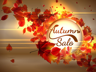 Autumn Sale background with copyspace. plus EPS10