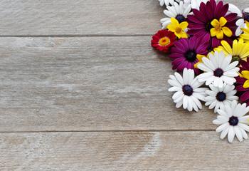 Blumen auf altem Holz