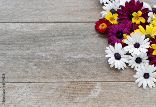canvas print picture Blumen auf altem Holz