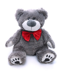Gray teddy bear on a white background