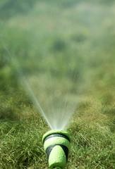 Water sprinkler irrigation, grass field