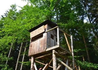 Baumhaus - Jägerstand im Wald