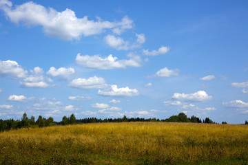 Green meadow under blue sky with clouds of white