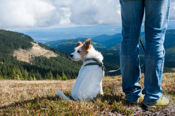 Wandern mit Hund