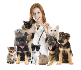 veterinarian and a group of pets