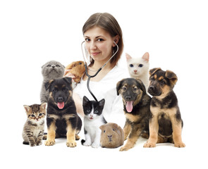 vet and a group of pets