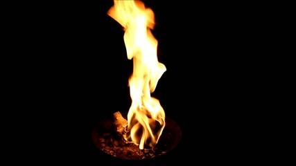 Feuer (fire) in Feuerschale