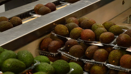 Ripe avocados in packaging line